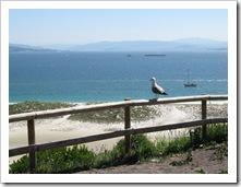 union de playa de rodas y playa de viños islas cies