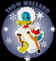 mallard snow 200